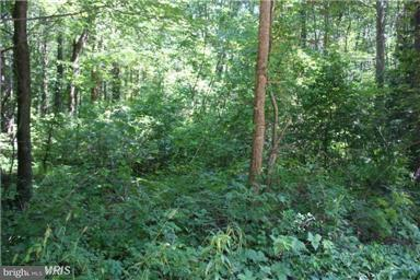 Land for Sale at Lot 11 Woodbine Dr Colonial Beach, Virginia 22443 United States