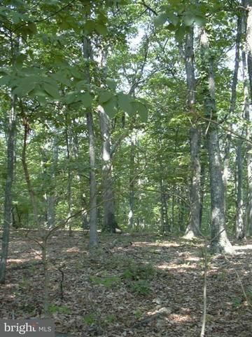 Land for Sale at 53 Sleepy Knolls Shanks, West Virginia 26761 United States