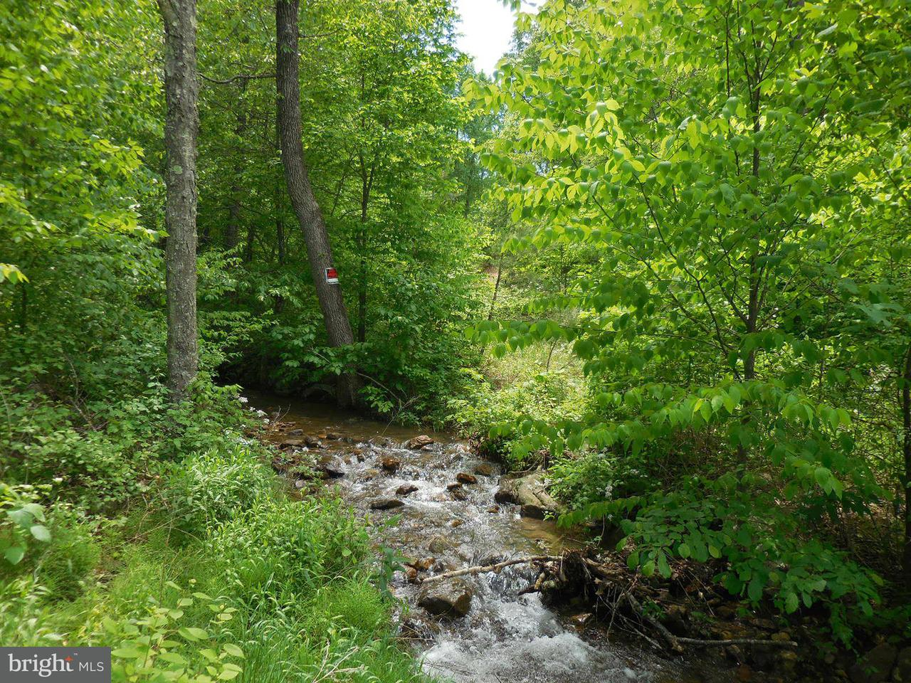 Land for Sale at Off Back Creek Rd/Bear Ri Yellow Spring, West Virginia 26865 United States