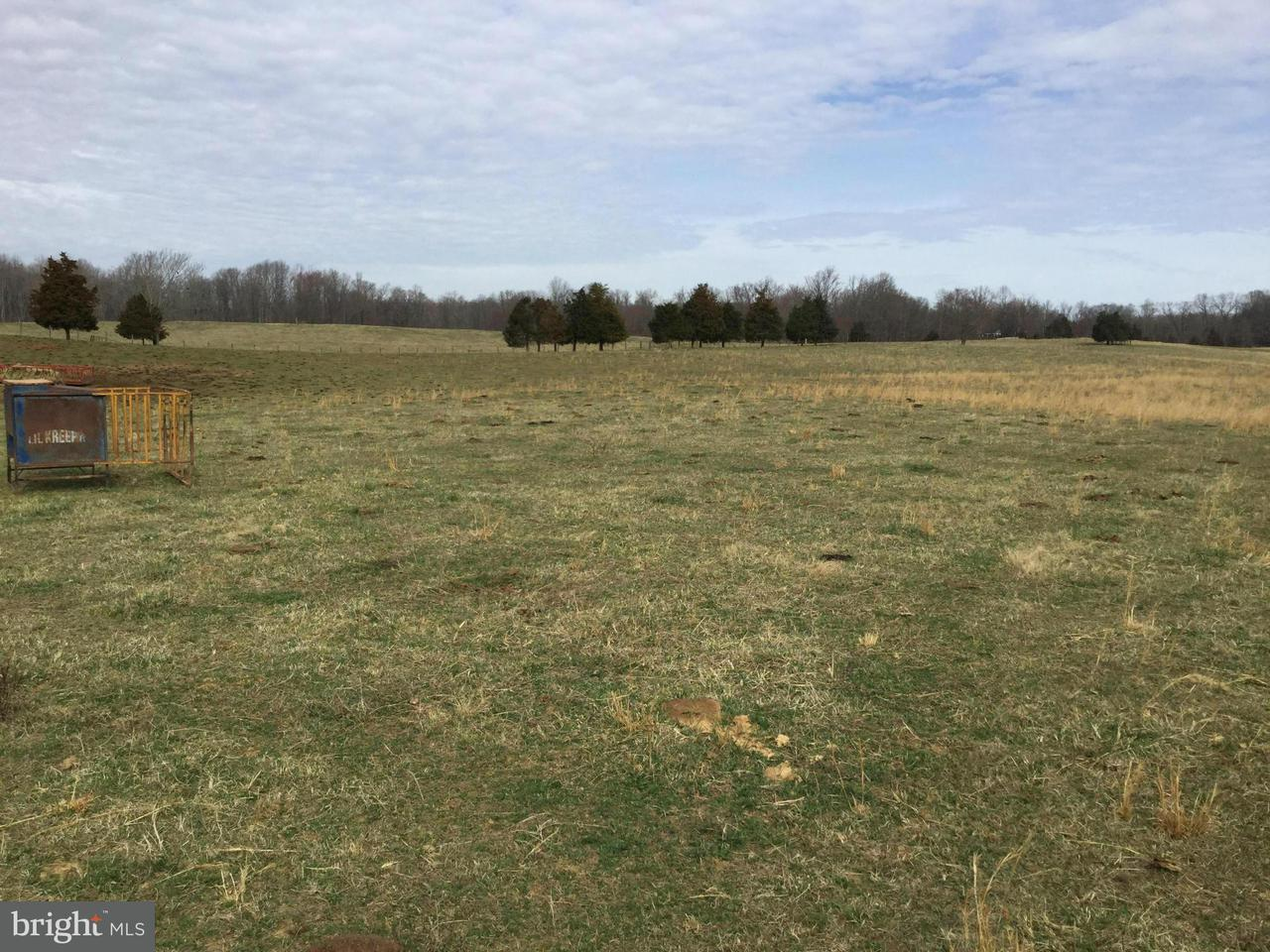 Additional photo for property listing at Ryland Chapel Road Ryland Chapel Road Jeffersonton, Virginia 22724 États-Unis