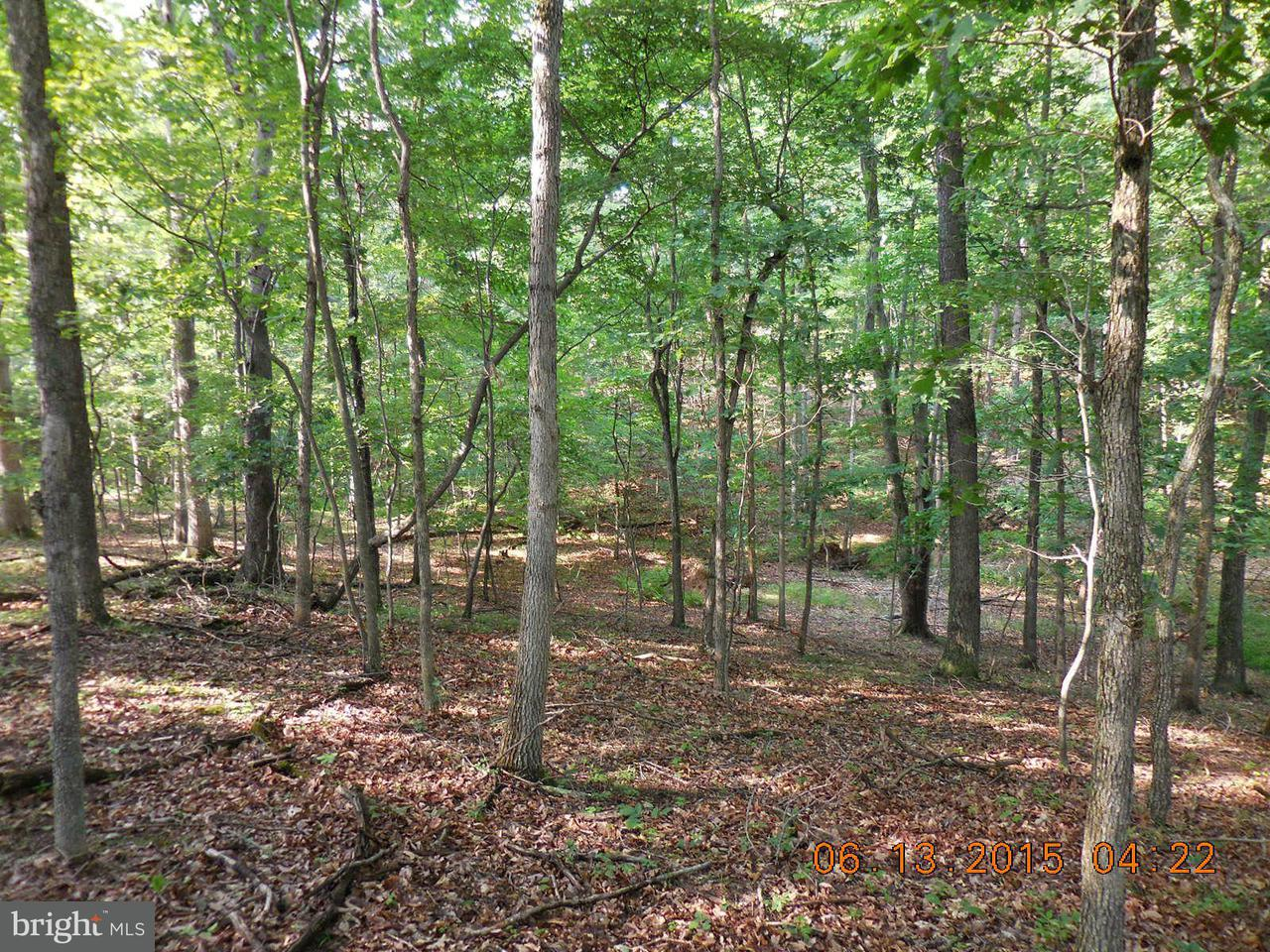 Additional photo for property listing at Sycamore Ln  Gore, Virginia 22637 United States