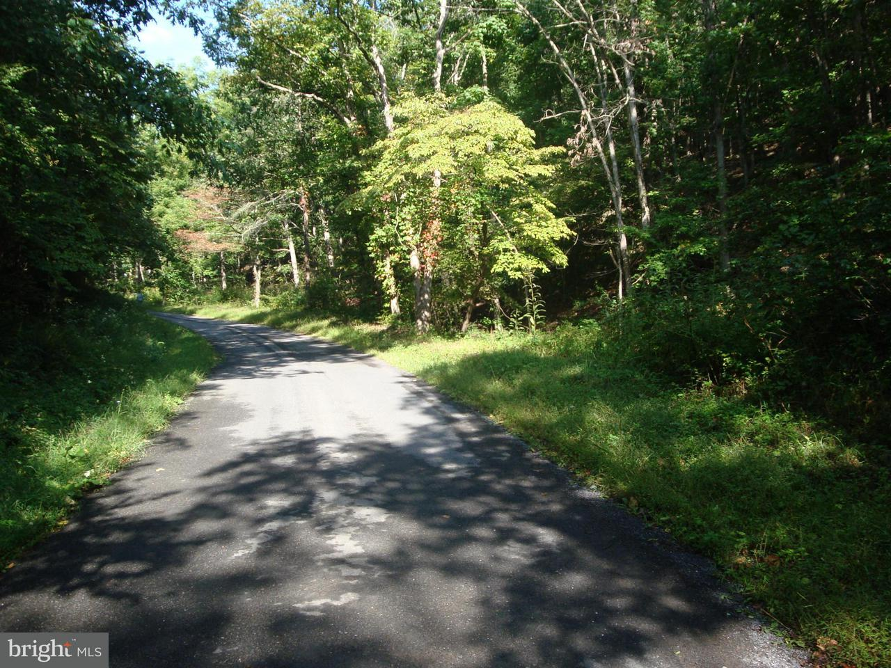 Additional photo for property listing at Funkhouser Rd.  Baker, West Virginia 26801 United States