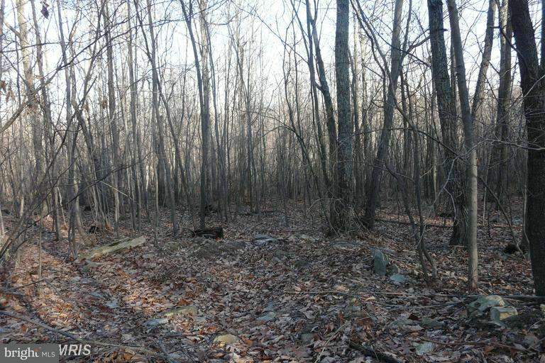 Land for Sale at Lot D Chestnut Drive Augusta, West Virginia 26704 United States