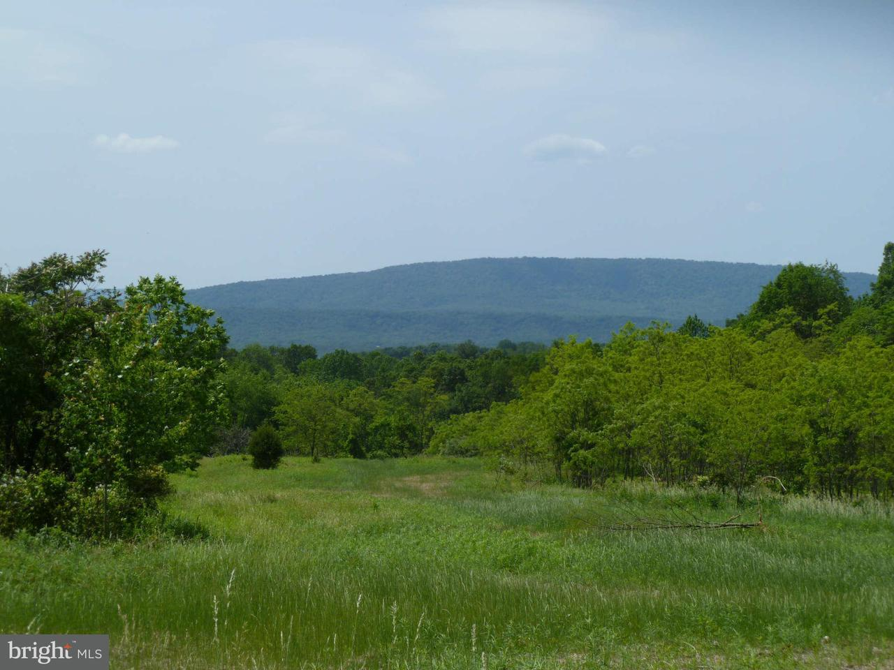 Land for Sale at Magnolia Paw Paw, West Virginia 25434 United States