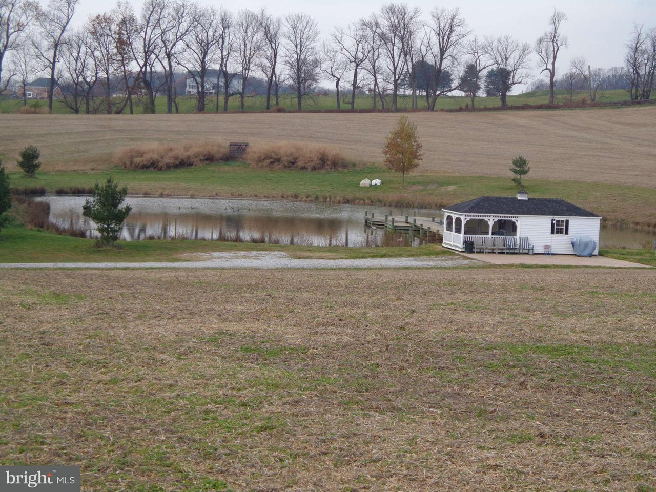 Additional photo for property listing at 13734 MANOR Road 13734 MANOR Road Baldwin, Maryland 21013 United States