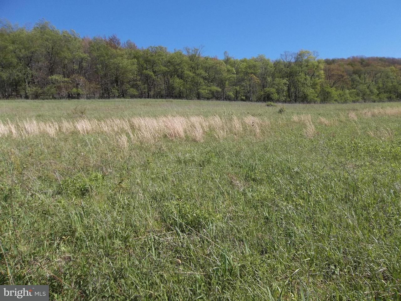 Additional photo for property listing at Lot 7 North Pass Trail  Deer Park, Maryland 21550 United States