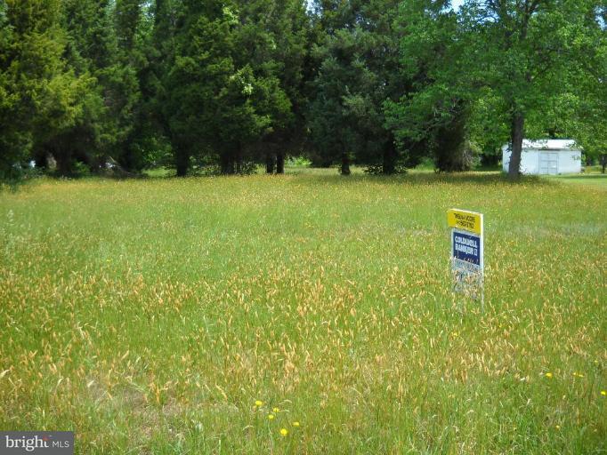 Land for Sale at Springdale Drive Bushwood, Maryland 20618 United States