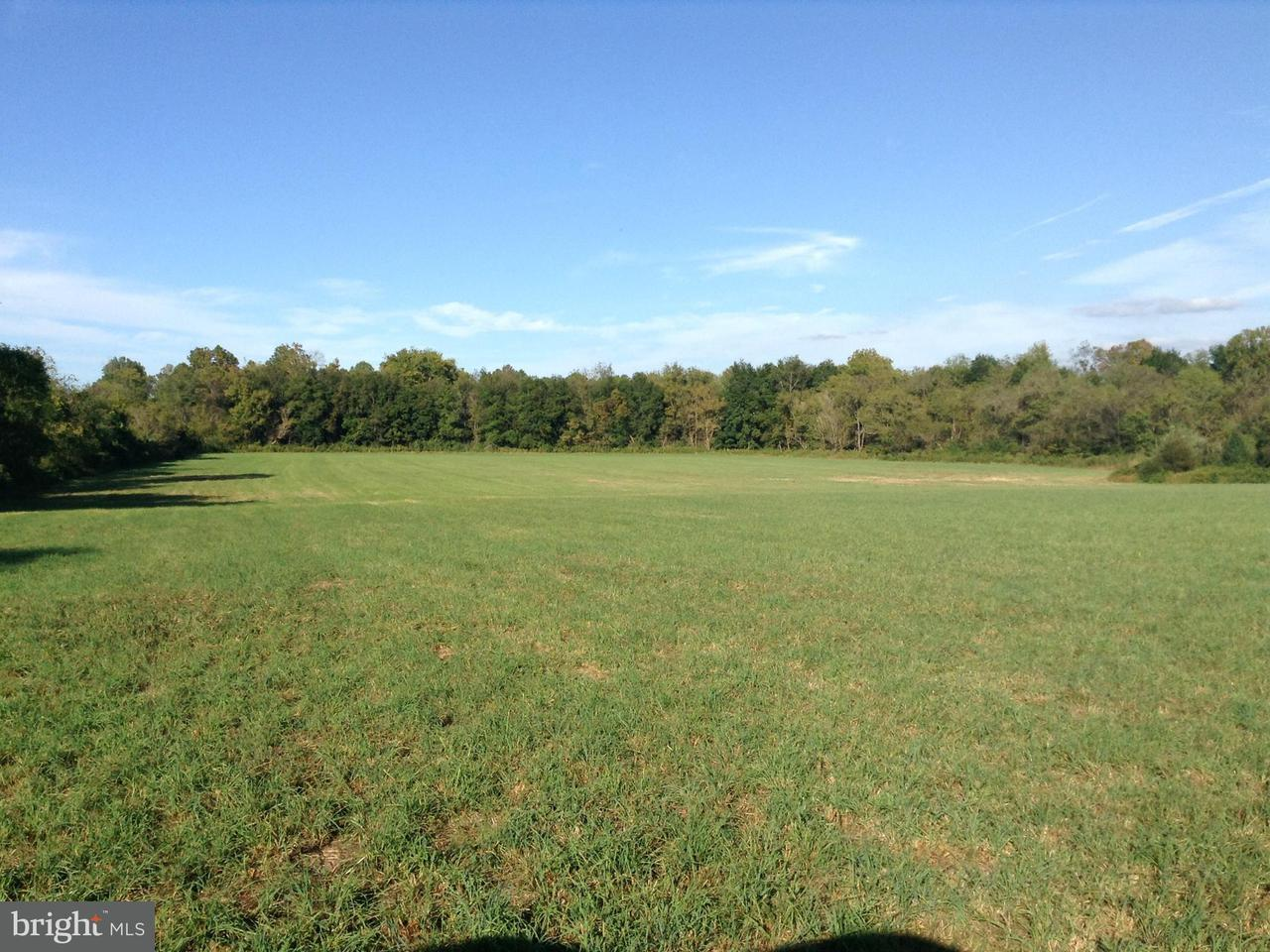 Land for Sale at Old Barn Rd And Rixyville Rd Rixeyville, Virginia 22737 United States