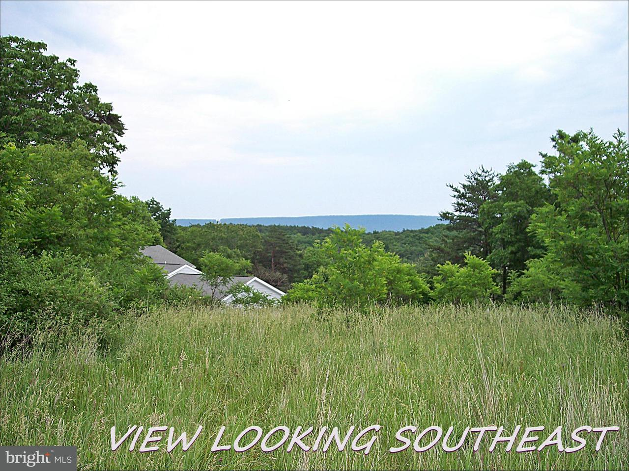 Additional photo for property listing at Apple Orchard Cir  Berkeley Springs, West Virginia 25411 United States