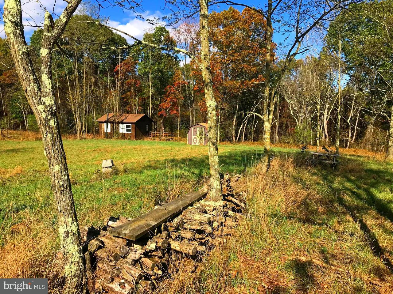 Single Family for Sale at 40 Riverhighlands Rd N Delray, West Virginia 26714 United States