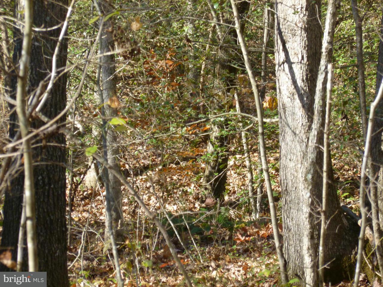 Terreno per Vendita alle ore SUMERDUCK Road SUMERDUCK Road Sumerduck, Virginia 22742 Stati Uniti