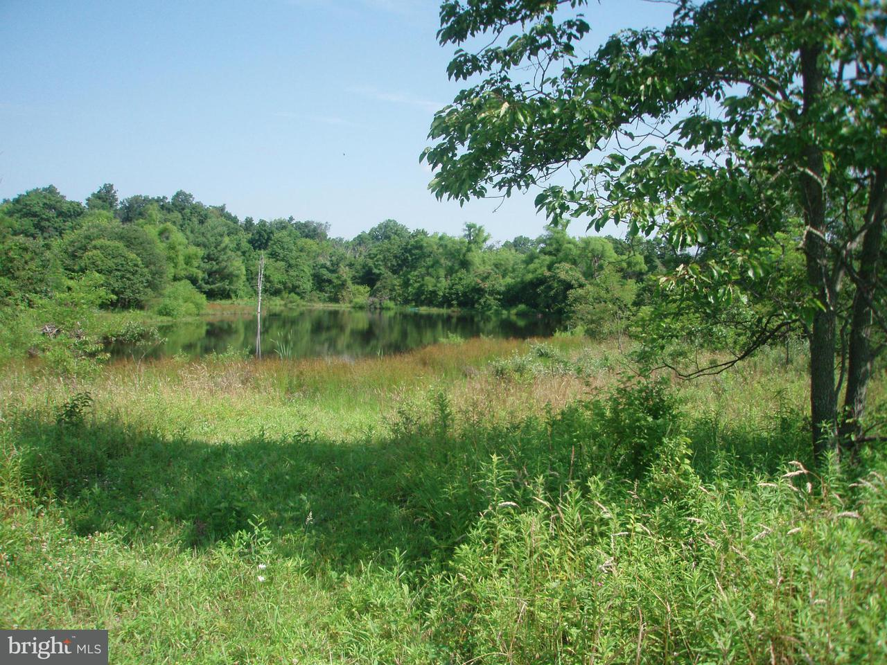 Land for Sale at AIRMONT AIRMONT Round Hill, Virginia 20141 United States