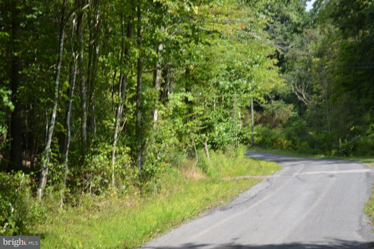 Land for Sale at Mongold Rd Mathias, West Virginia 26812 United States