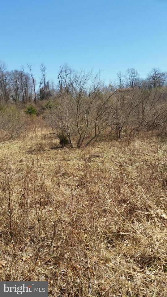 Additional photo for property listing at 9373 Elihu  Marshall, Virginia 20115 United States