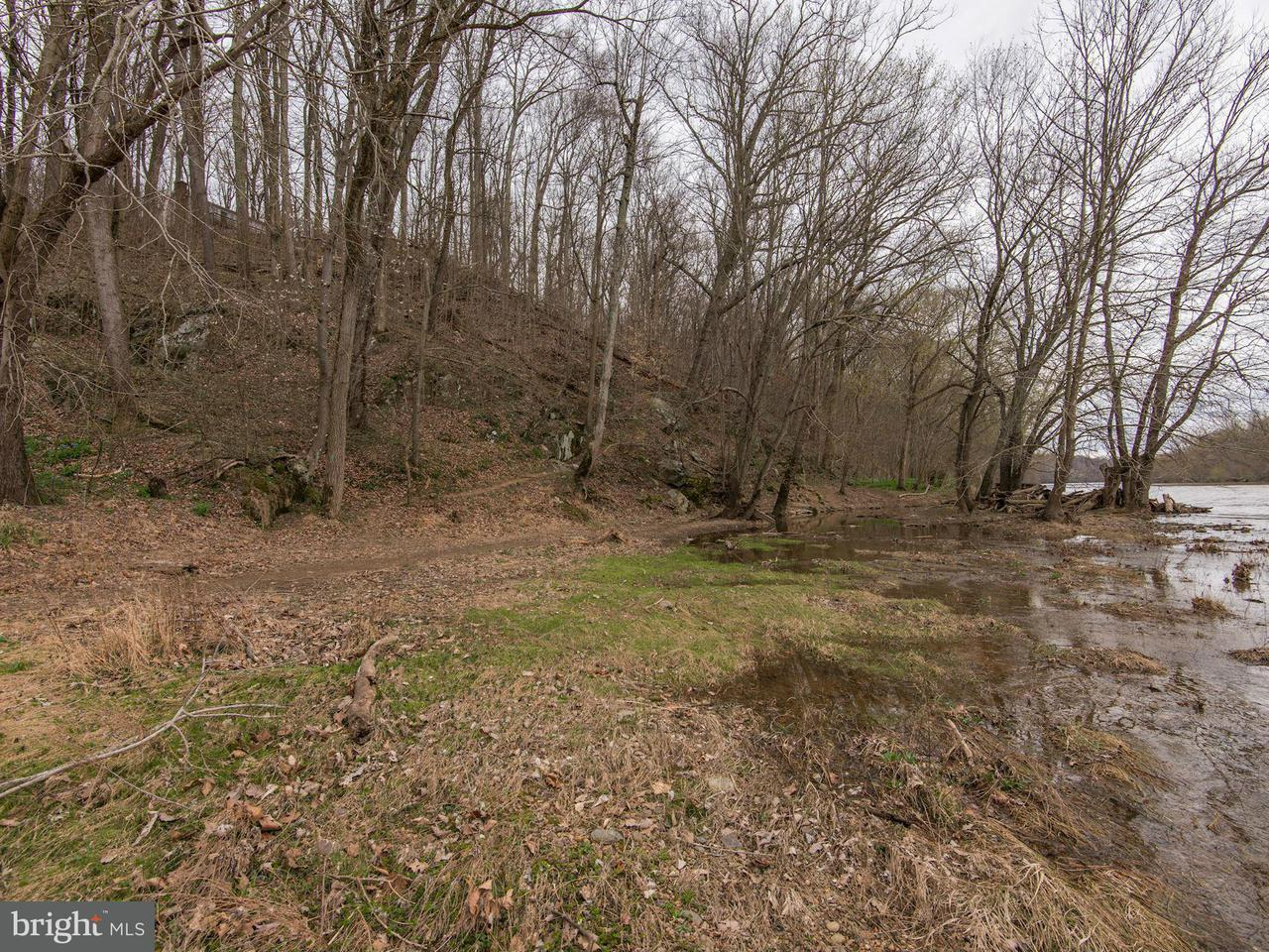 Additional photo for property listing at POTOMAC RIDGE Road POTOMAC RIDGE Road Great Falls, Virginia 22066 United States
