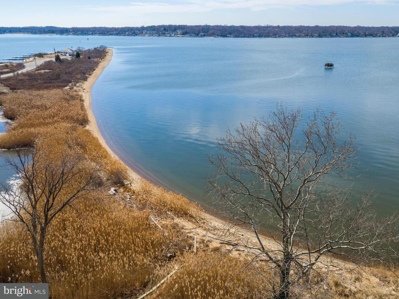 Additional photo for property listing at 766 Skywater Rd  Gibson Island, Maryland 21056 United States