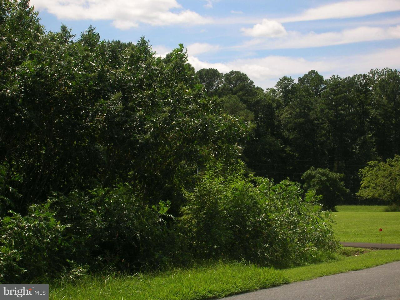 Land for Sale at Wrights Wharf Rd Hurlock, Maryland 21643 United States