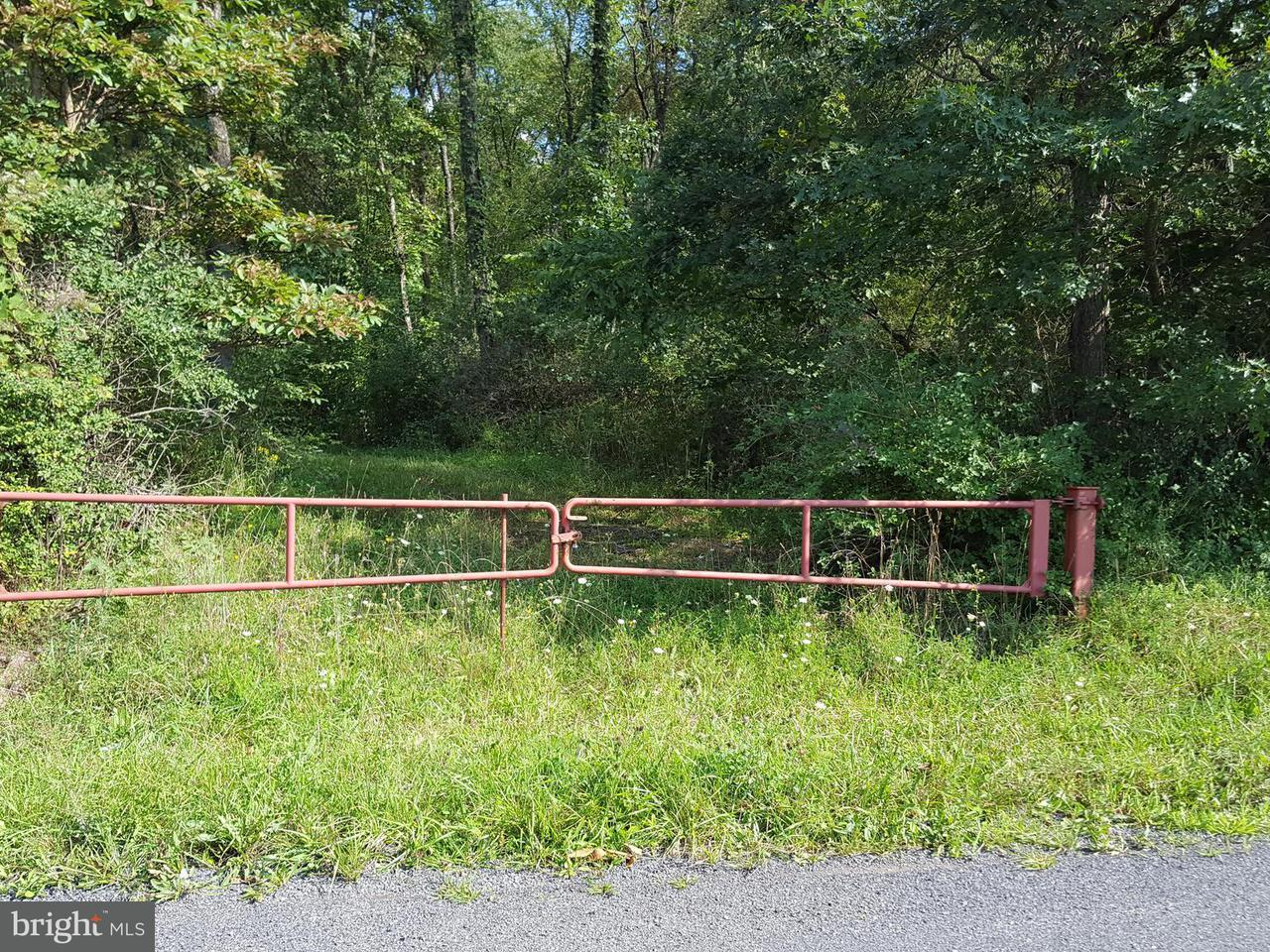 Land for Sale at Lot 4 Turkey Farm Rd NE Little Orleans, Maryland 21766 United States