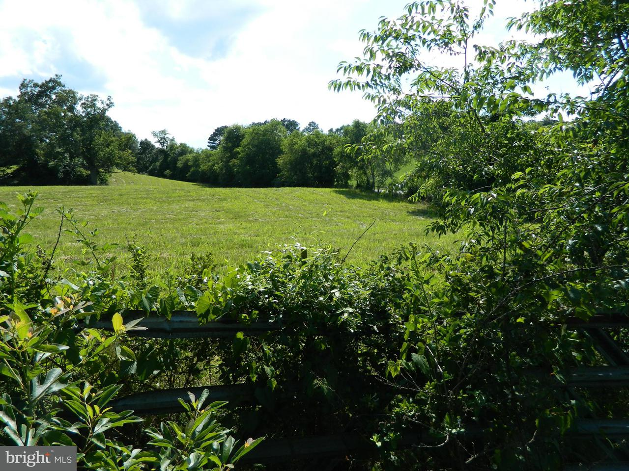 Land for Sale at 15491 Off Oakland Road 15491 Off Oakland Road Reva, Virginia 22735 United States