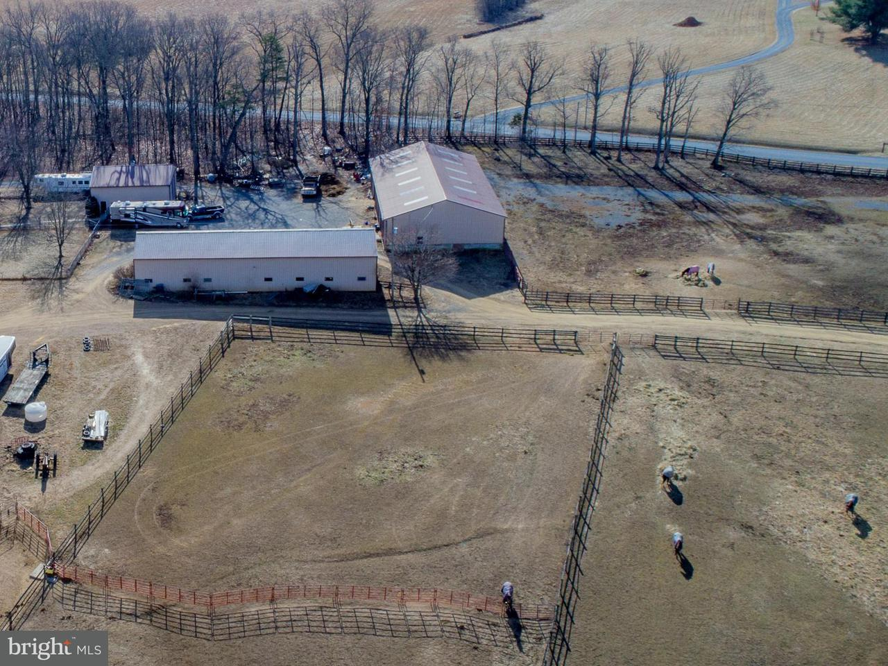 Terreno por un Venta en Fishpaw Road Fishpaw Road Berryville, Virginia 22611 Estados Unidos