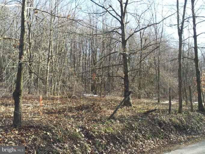 Additional photo for property listing at 6 Lynndale Rd  Oakland, Maryland 21550 United States