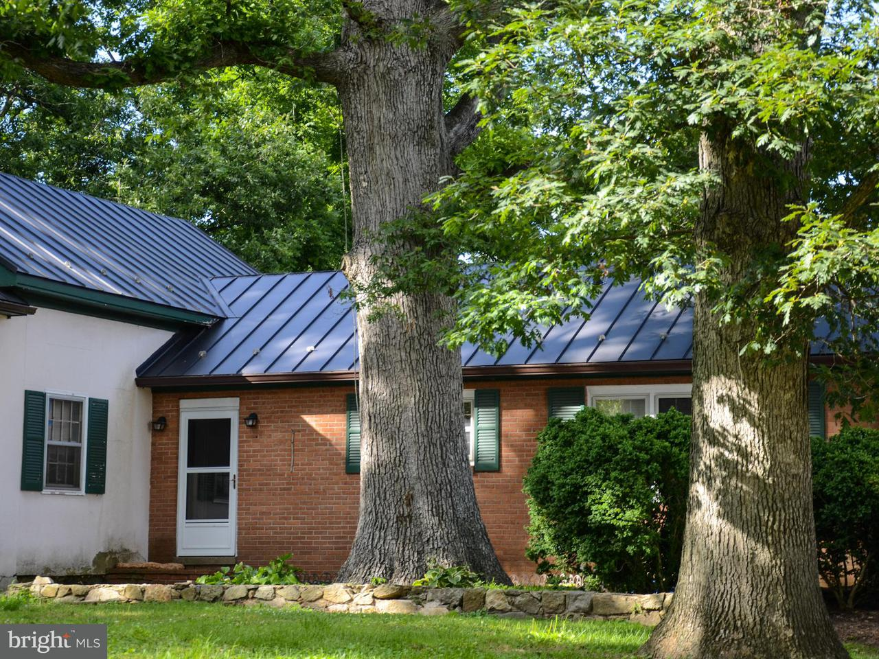 Additional photo for property listing at 35469 Millville Road 35469 Millville Road Middleburg, 弗吉尼亞州 20117 美國
