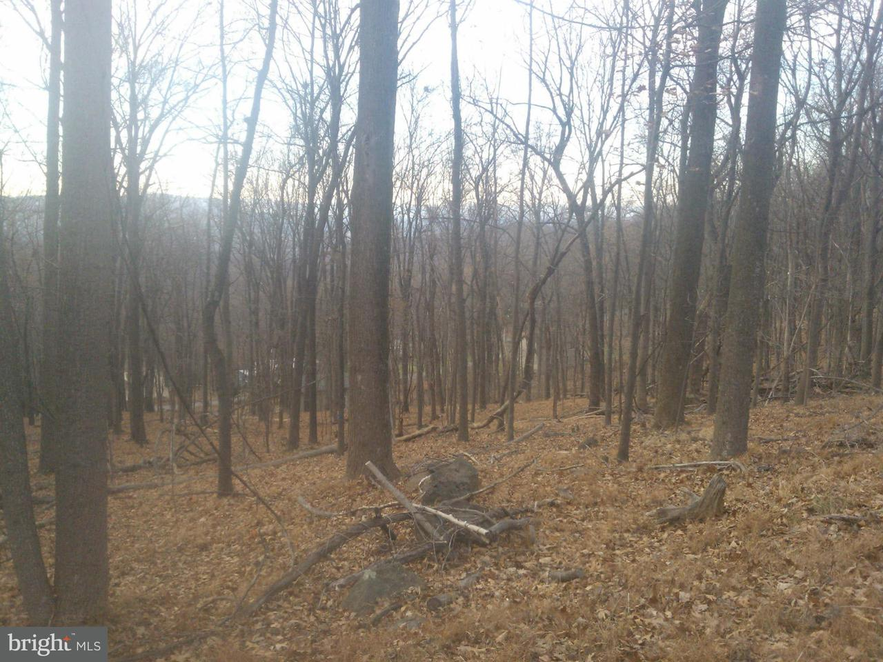 Land for Sale at Club House Rd Front Royal, Virginia 22630 United States