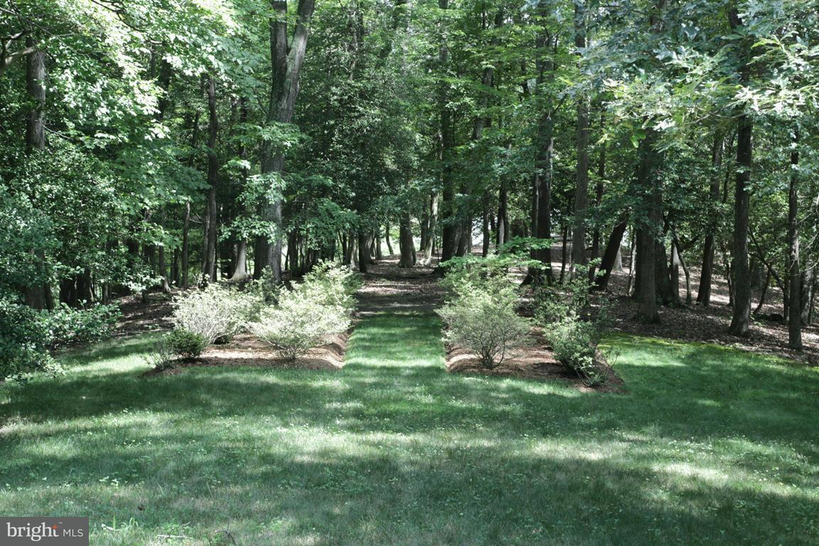 Additional photo for property listing at 4750 ZACATA Road 4750 ZACATA Road Montross, Virginia 22520 Stati Uniti