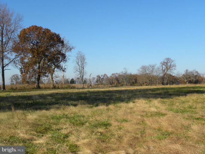 Additional photo for property listing at POND CREEK Lane POND CREEK Lane Earleville, Maryland 21919 Verenigde Staten