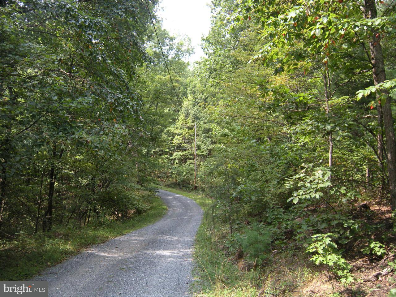 Additional photo for property listing at 7lot # Mountain View Dr  Capon Bridge, West Virginia 26711 United States
