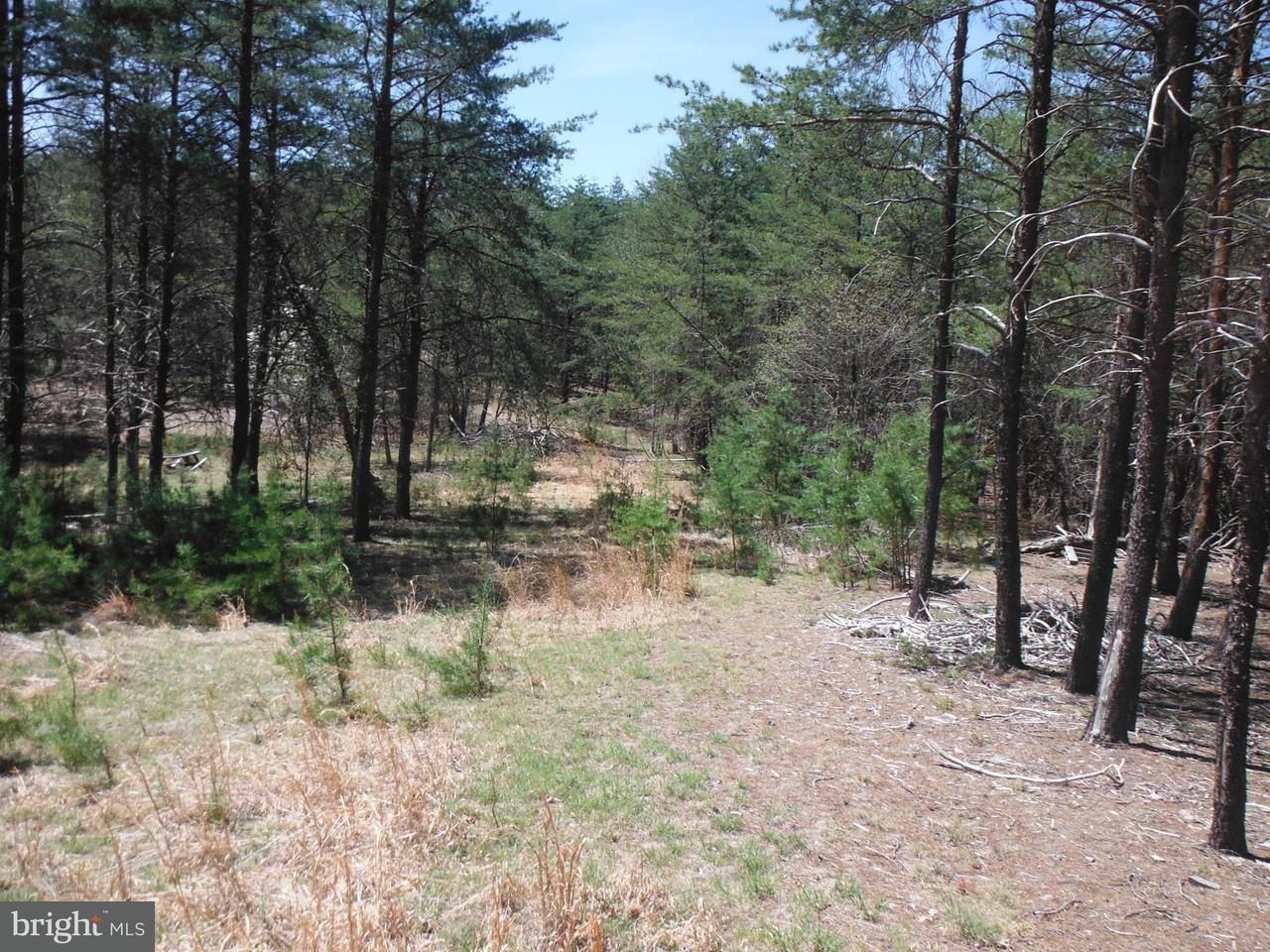 Land for Sale at Green Ridge Dr Green Spring, West Virginia 26722 United States