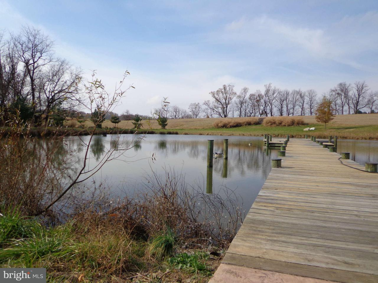 Additional photo for property listing at 13734 MANOR Road 13734 MANOR Road Baldwin, Maryland 21013 Estados Unidos