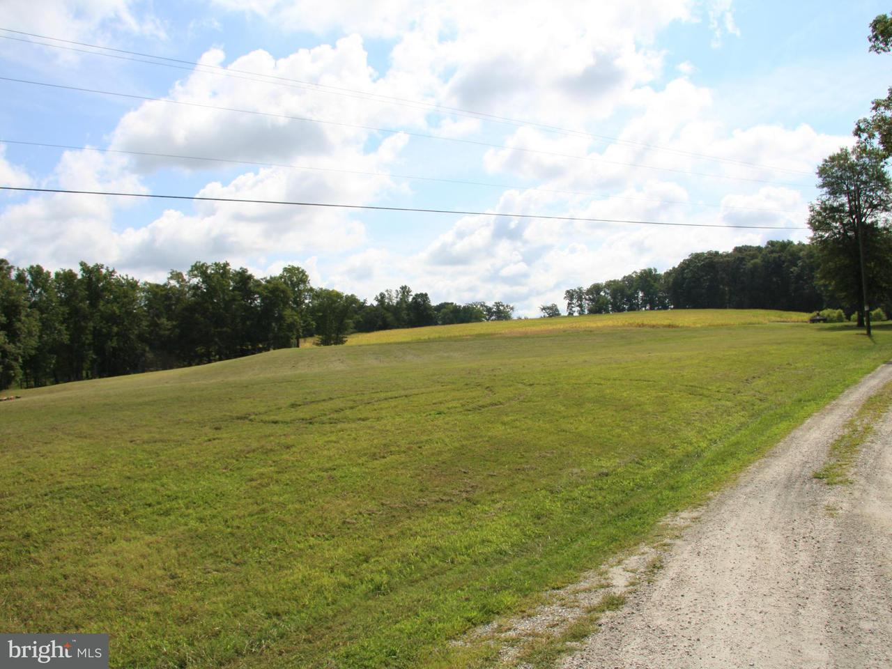 Additional photo for property listing at James Madison Hwy James Madison Hwy Fork Union, Virginia 23055 Estados Unidos