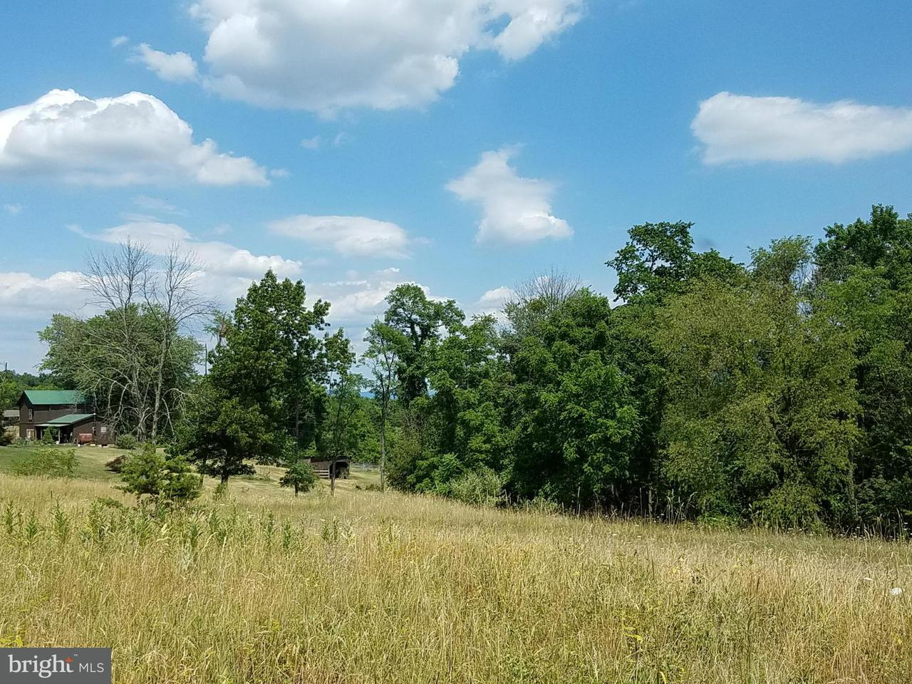 Land for Sale at 5 Husk Trl Berkeley Springs, West Virginia 25411 United States