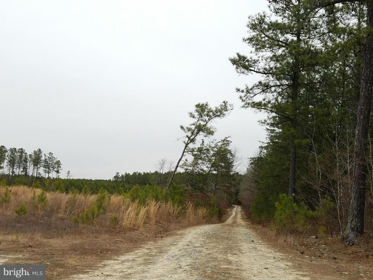 Land for Sale at Not On File Aylett, Virginia 23009 United States