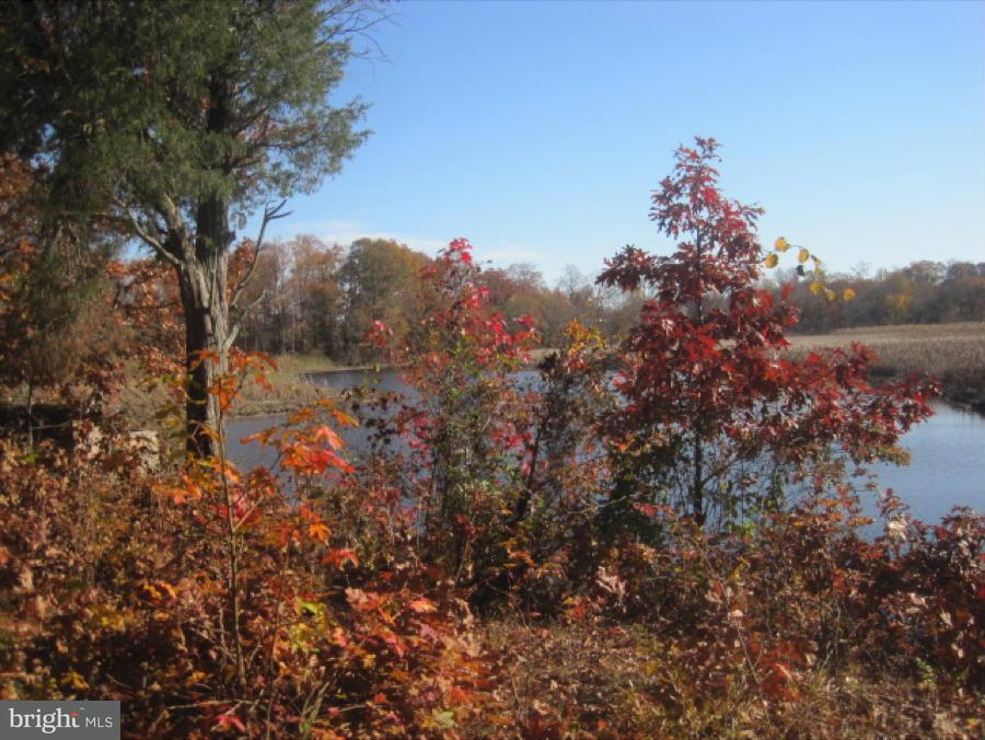 Land for Sale at 177 Bridle Ln Church Hill, Maryland 21623 United States