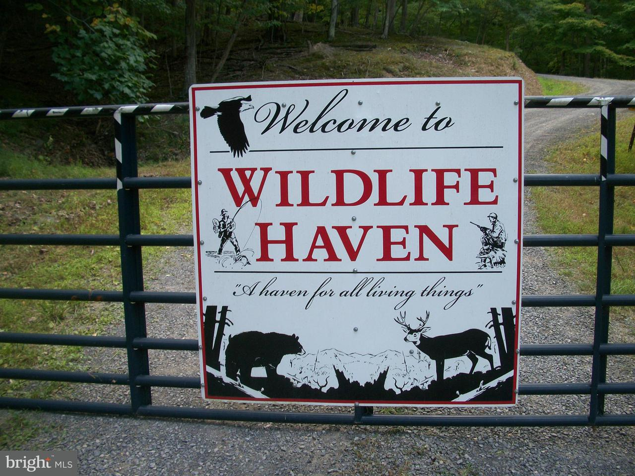 Land for Sale at Wildlife Haven Upper Tract, West Virginia 26866 United States