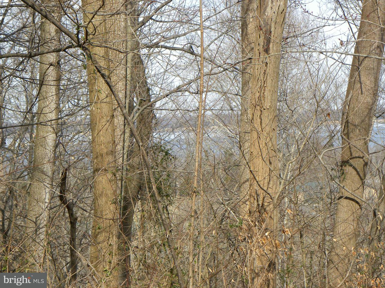 Additional photo for property listing at NOT ON FILE NOT ON FILE King George, Virginia 22485 United States