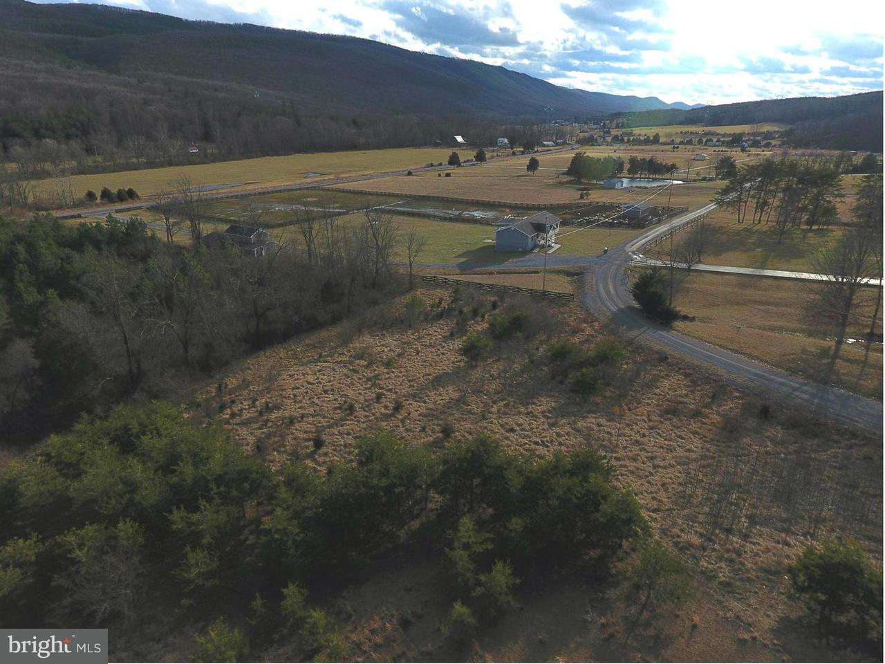 Land for Sale at North Crescent Dr Delray, West Virginia 26714 United States