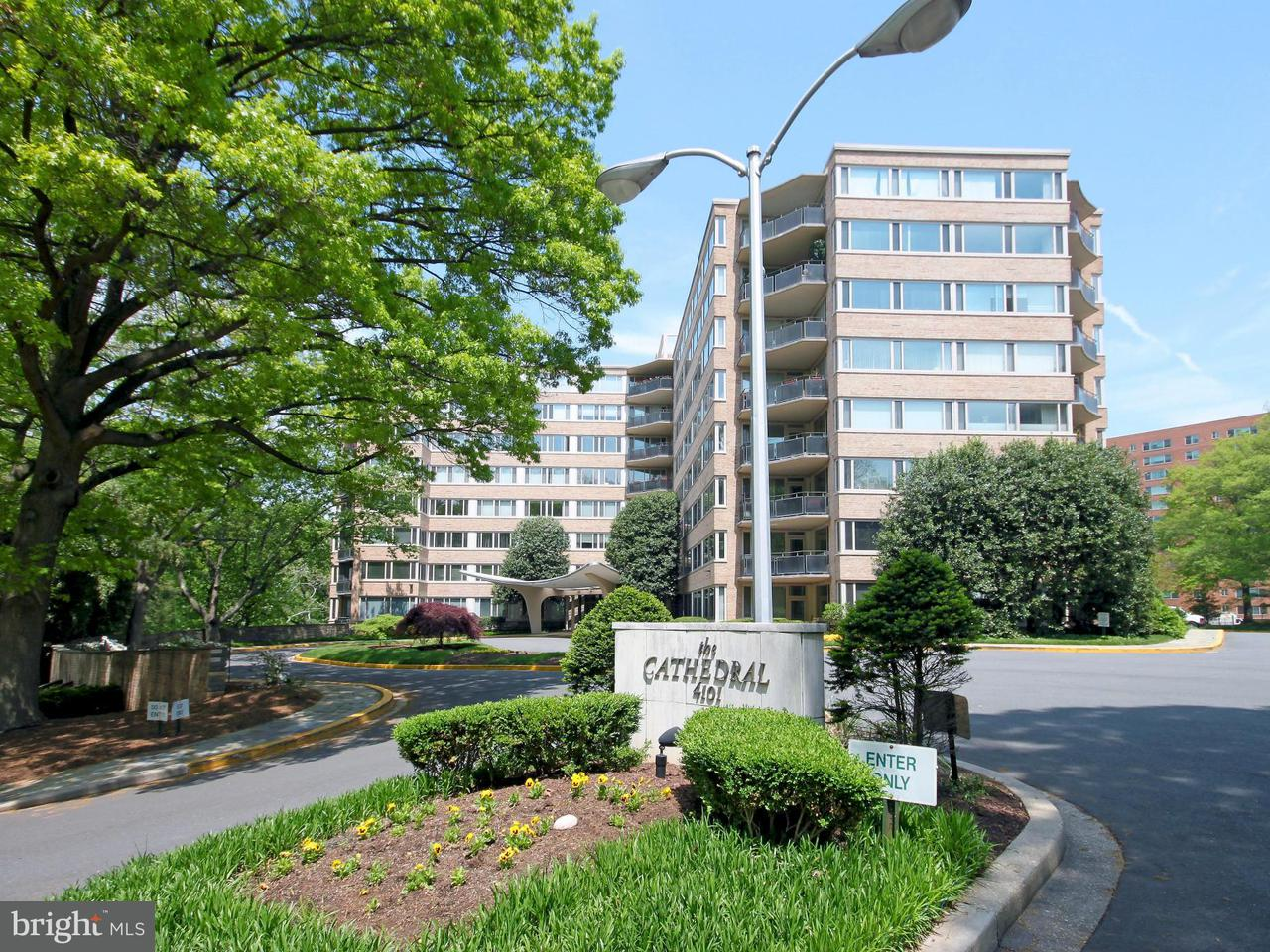 Condominium for Rent at 4101 Cathedral Ave NW #802 Washington, District Of Columbia 20016 United States