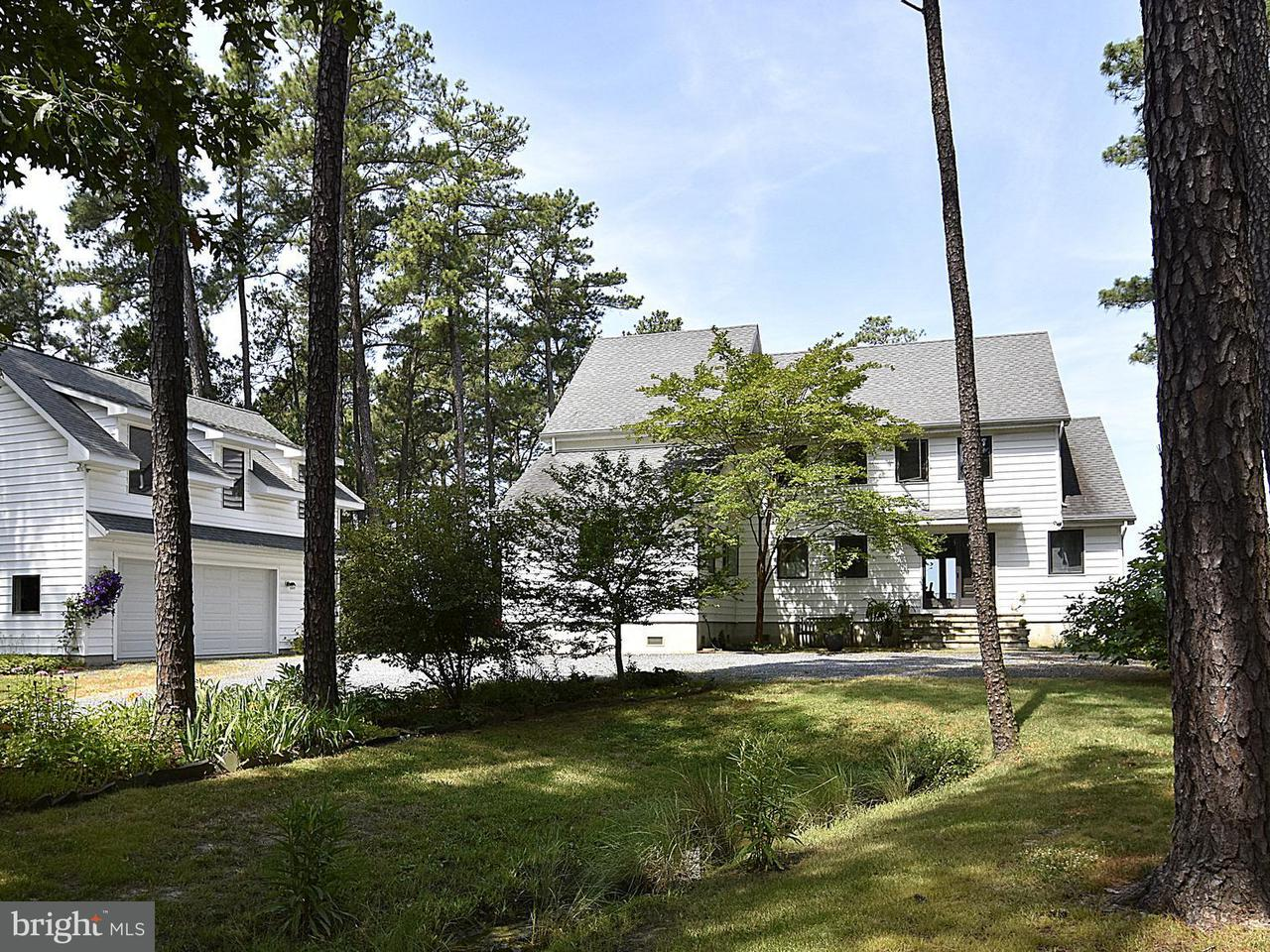 獨棟家庭住宅 為 出售 在 6650 TILGHMAN ISLAND Road 6650 TILGHMAN ISLAND Road Sherwood, 馬里蘭州 21665 美國