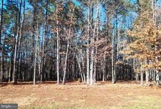 Land for Sale at 0 Carpenters Rest Caret, Virginia 22436 United States
