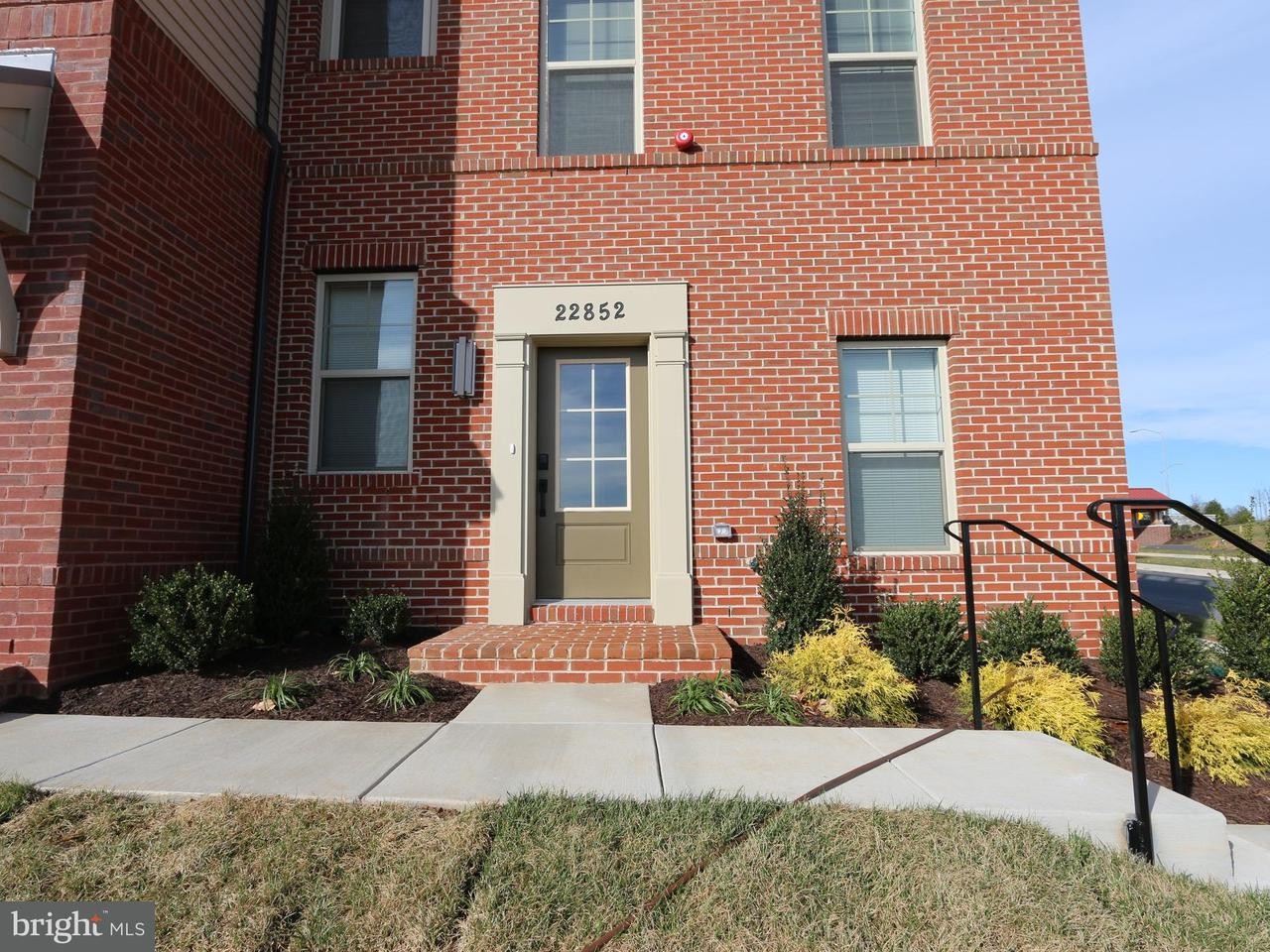 Other Residential for Rent at 22852 Cabin Branch Ave Clarksburg, Maryland 20871 United States