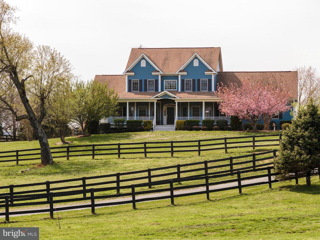 農場 のために 売買 アット 15929 HAMPTON Road 15929 HAMPTON Road Hamilton, バージニア 20158 アメリカ合衆国