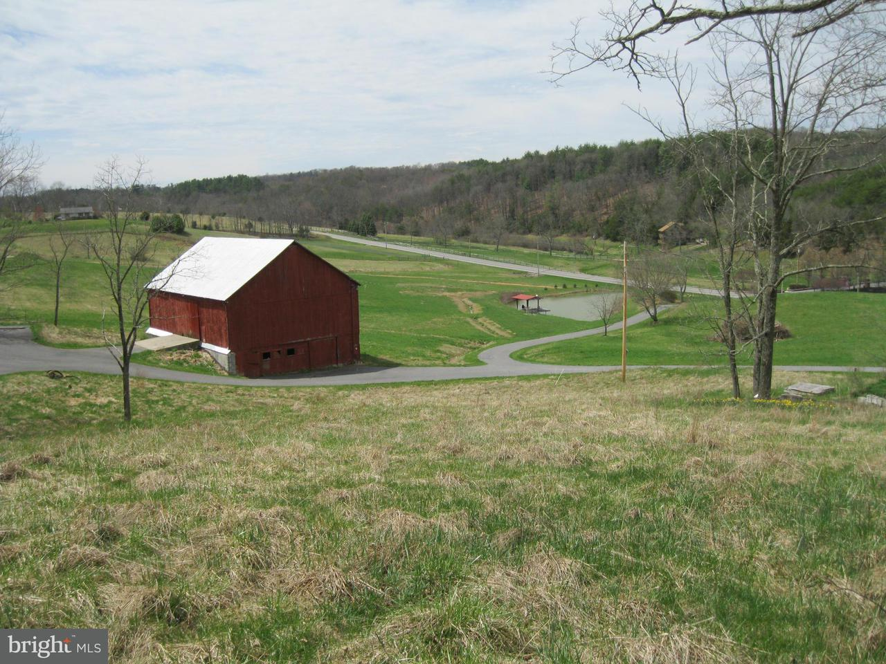 Additional photo for property listing at 6146 Great Cove Rd  Needmore, Pennsylvania 17238 United States