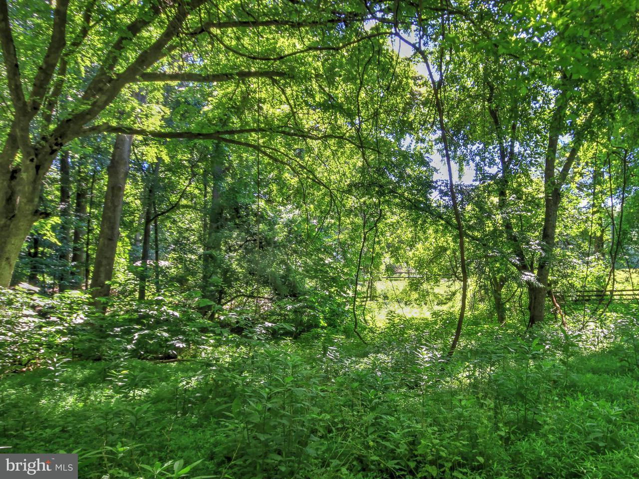Additional photo for property listing at 119 COMMONAGE Drive 119 COMMONAGE Drive Great Falls, Virginia 22066 Estados Unidos