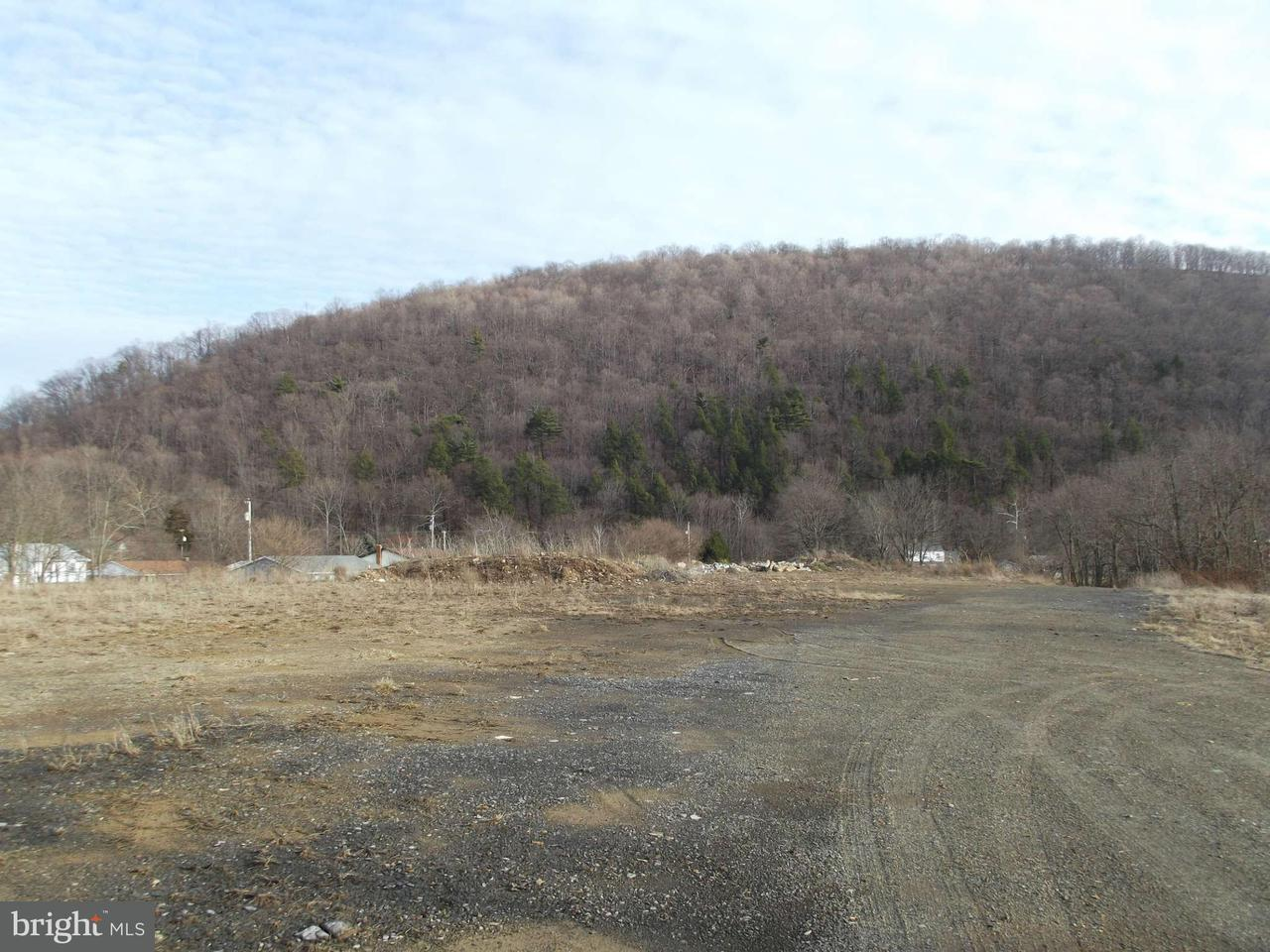 Additional photo for property listing at Us Rt. 220 Us Rt. 220 New Creek, West Virginia 26743 Vereinigte Staaten