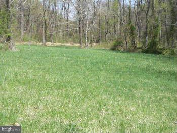 Additional photo for property listing at Bamboo Lane  Berkeley Springs, West Virginia 25411 United States