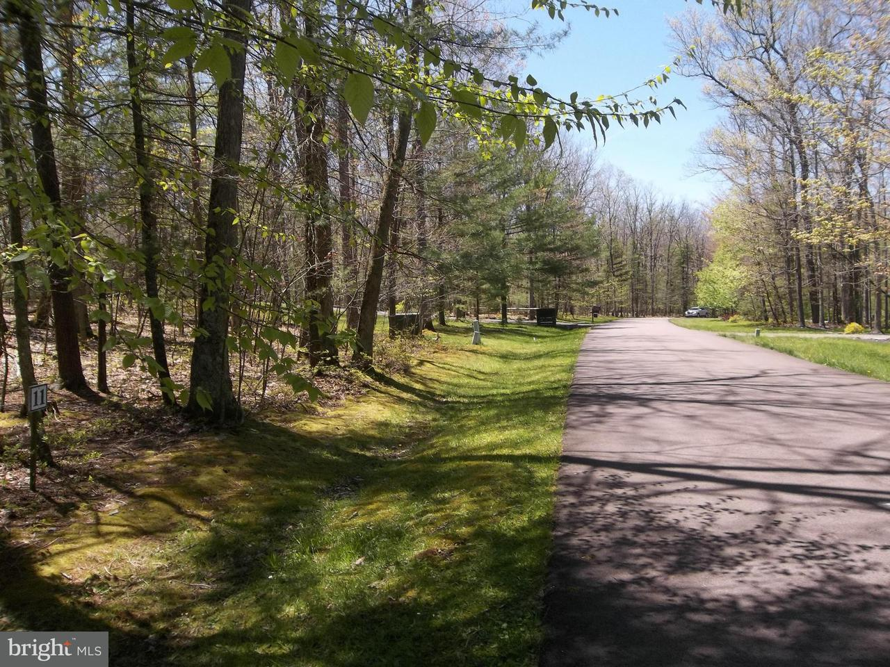 Additional photo for property listing at Lot 11 Wood Ridge Rd  Swanton, Maryland 21561 United States
