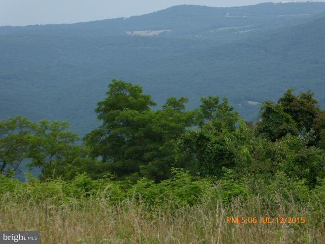 Land for Sale at 80 North Apple Ridge Rd Romney, West Virginia 26757 United States